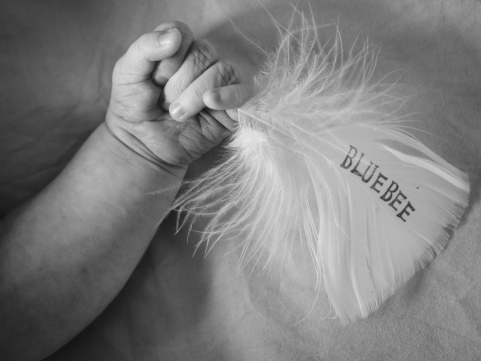 """a baby's hand holding a feather with """"BLUEBEE"""" glued on"""
