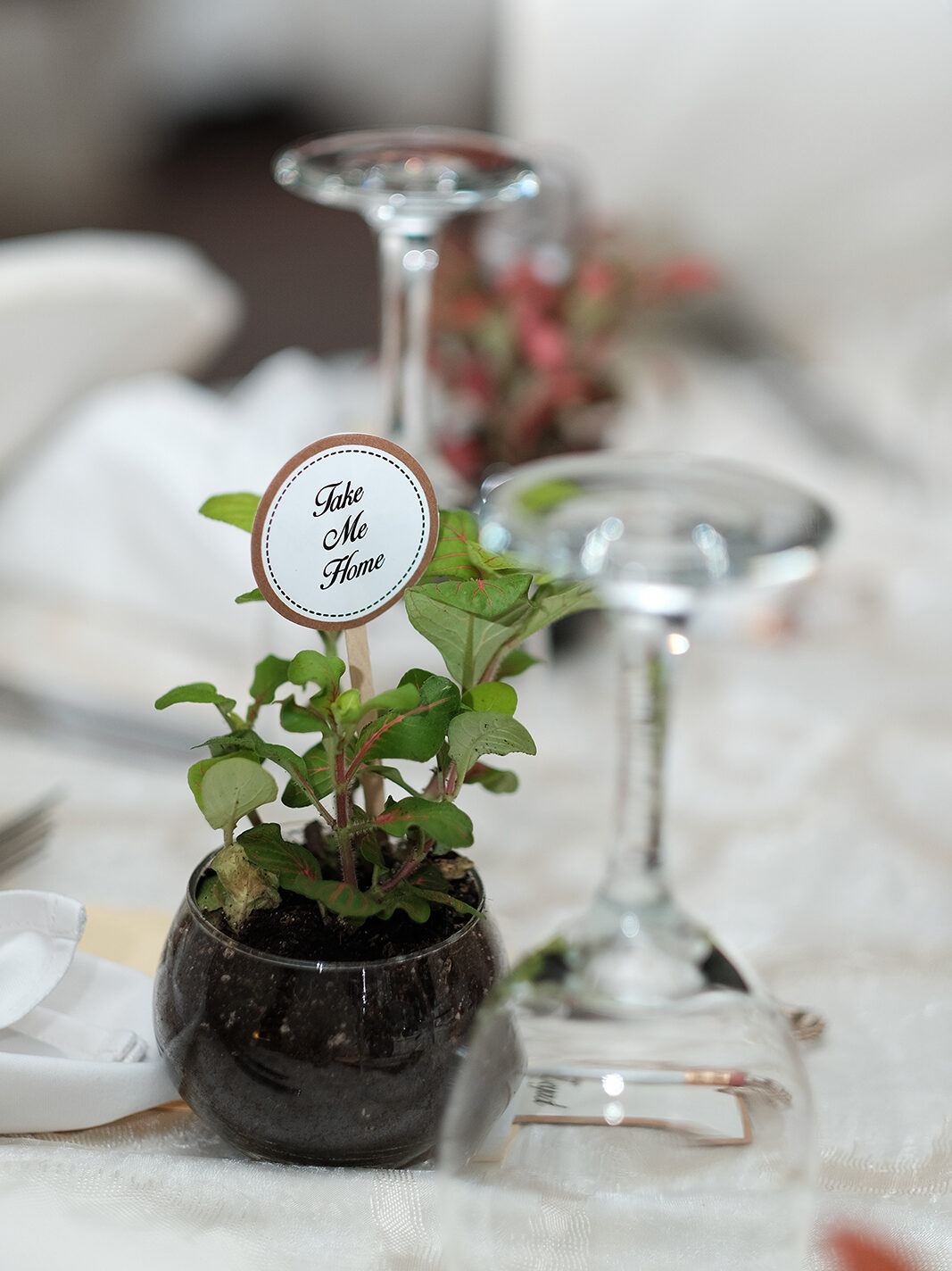"Decorations on top of a wedding table saying ""take me home"""